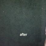 Arlington_Heights-2-after-carpet