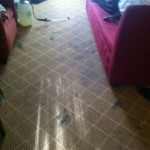 Arlington_Heights-Carpet-Clean-before