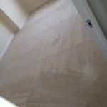 Arlington_Heights-Carpet-Clean-room