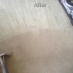 Arlington_Heights-Carpet-Cleaning-Company