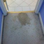 Arlington_Heights-Vomit-1-before-carpet