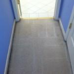 Arlington_Heights-Vomit-2-after-carpet
