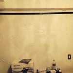 Arlington_Heights-mold-damage