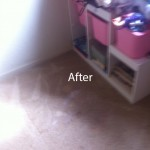 Arlington_HeightsWall2WallCarpetSteamCleaningB