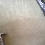 Carpet-Cleaning-Arlington_Heights