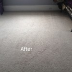 Cranberry Juice Stain Removal Arlington_Heights B