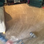 Dirty-Carpet-Cleaned-Arlington_Heights