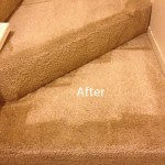 Stairs-Carpet-Cleaning-Arlington_Heights-B