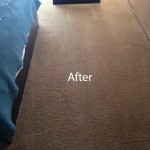 ink stain removal Arlington_Heights-B